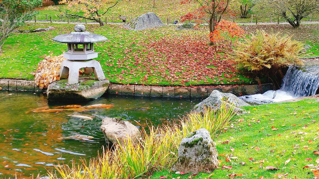 Contemplation And Meditation In The Japanese Garden